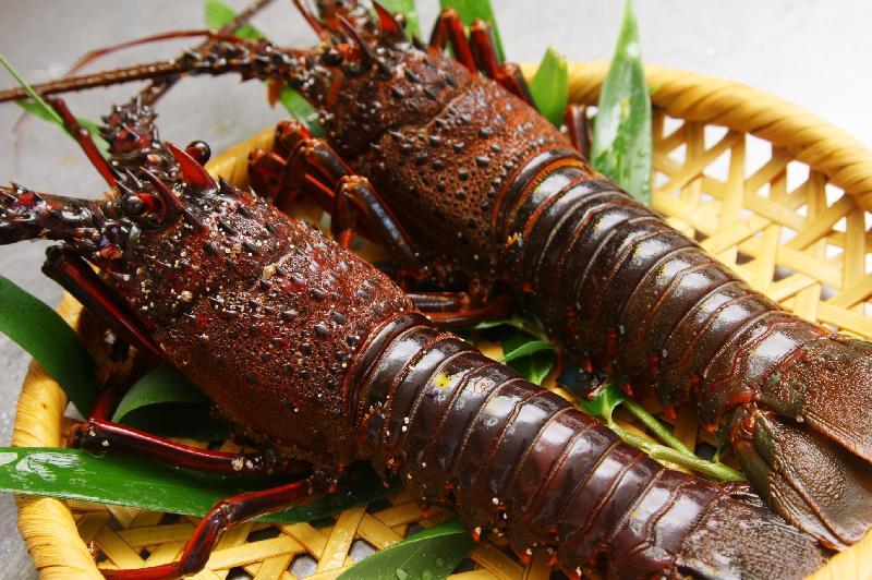伊勢海老料理のグルメ・レストラン検索結果一覧    …